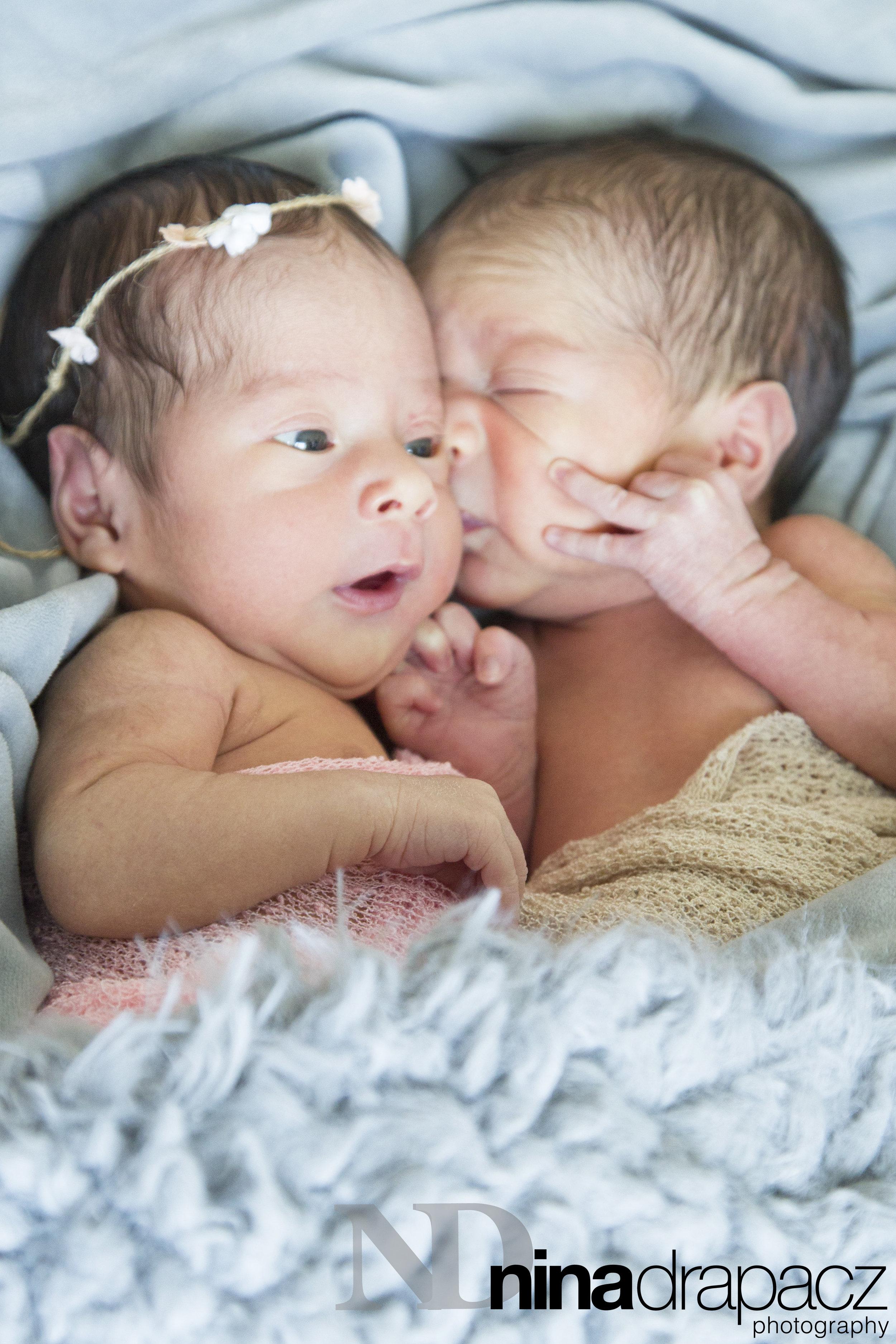 newbornbabies.jpg