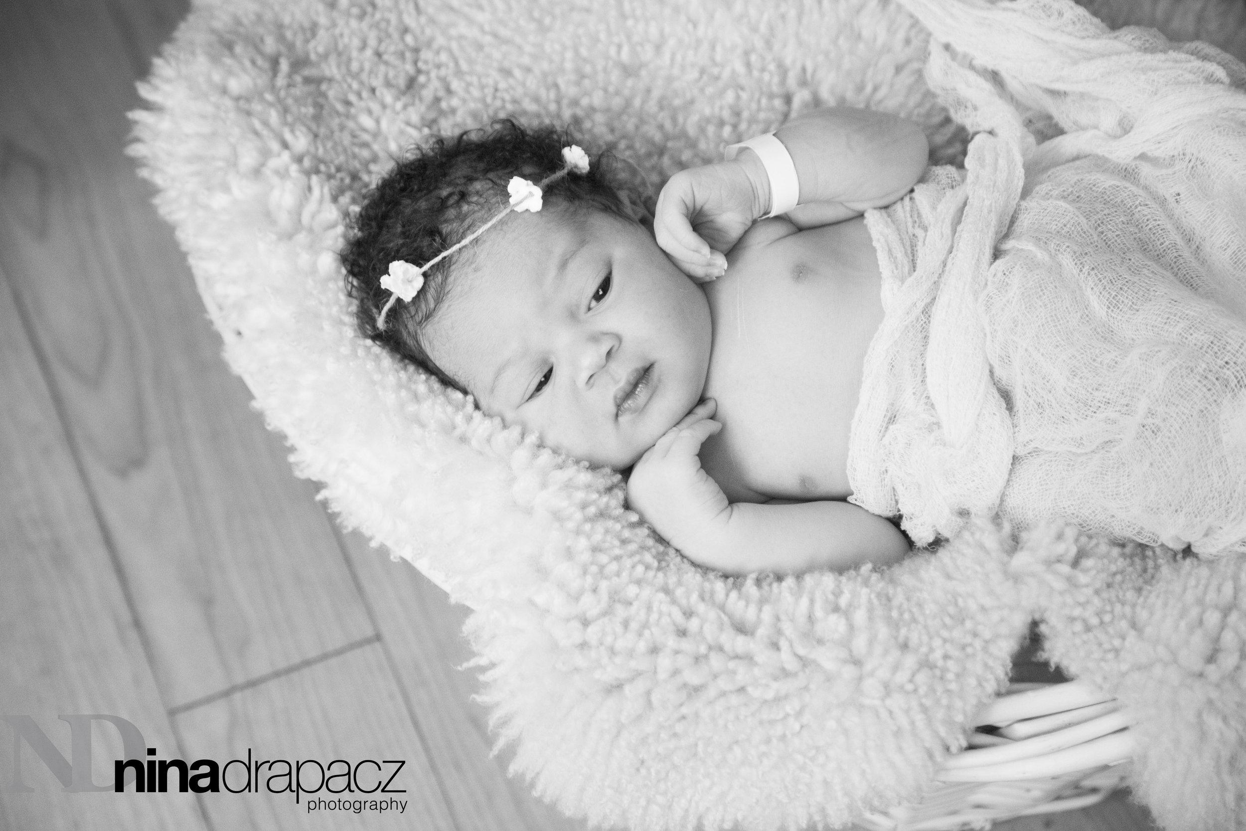 babygirlinbasket2.jpg