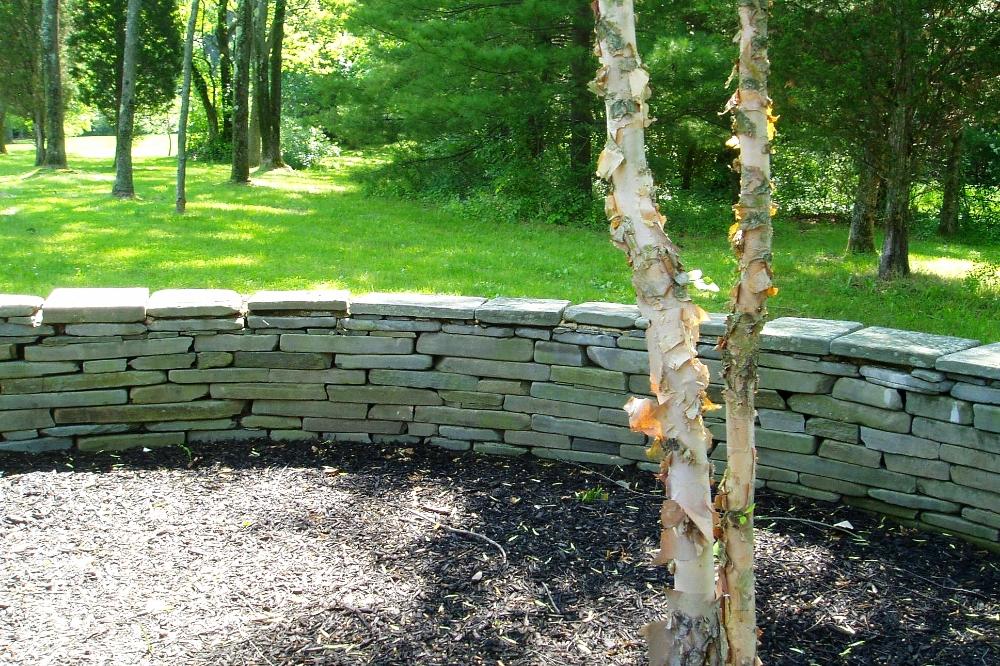 construction-kiefer-wall-1.JPG