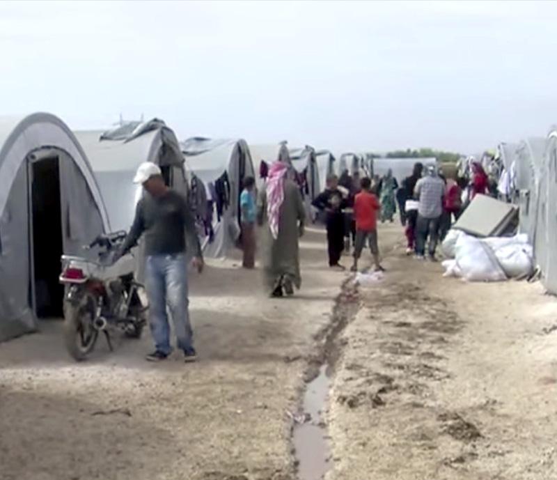 CaseStudy-Images-Syria.jpg