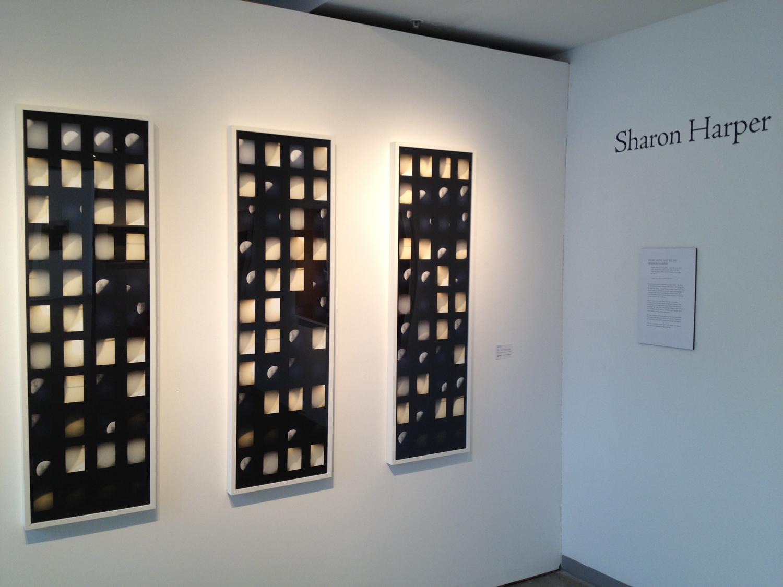 CPAC, 2012: Sharon Harper