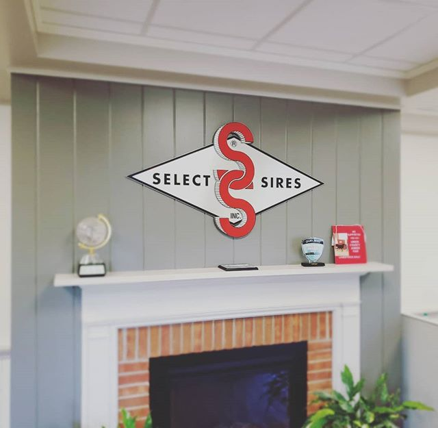 """Leaders in the industry, @selectsiresinc called on us to bring their brand into their corporate headquarters in Plain City, OH.  We used 3/8"""" platinum acrylic with a brushed aluminum facing. PSV overlays for the art. Please scroll through and see what Streamline can offer to bring your office space to life. And stay tuned, we're not done here.  #branding #brandidentity #officegraphics #environmentaldesign #trustuswithyourbrand"""