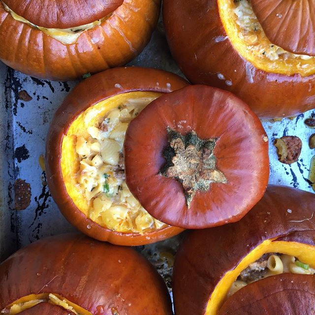 Pumpkins stuffed with mac & cheeeeese. 7 kinds of cheese. And sausage. And rosemary. Prrrrrrr