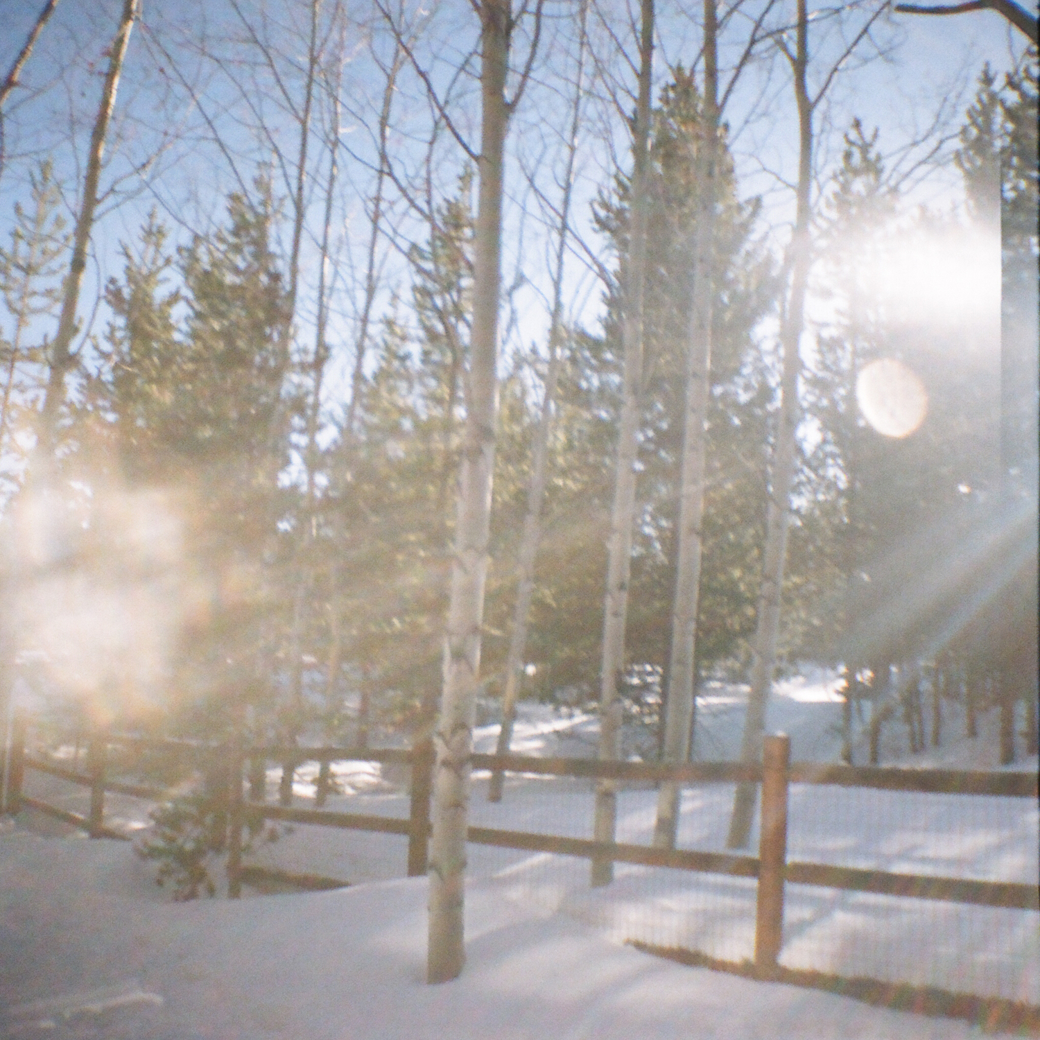 lens flare in the snow