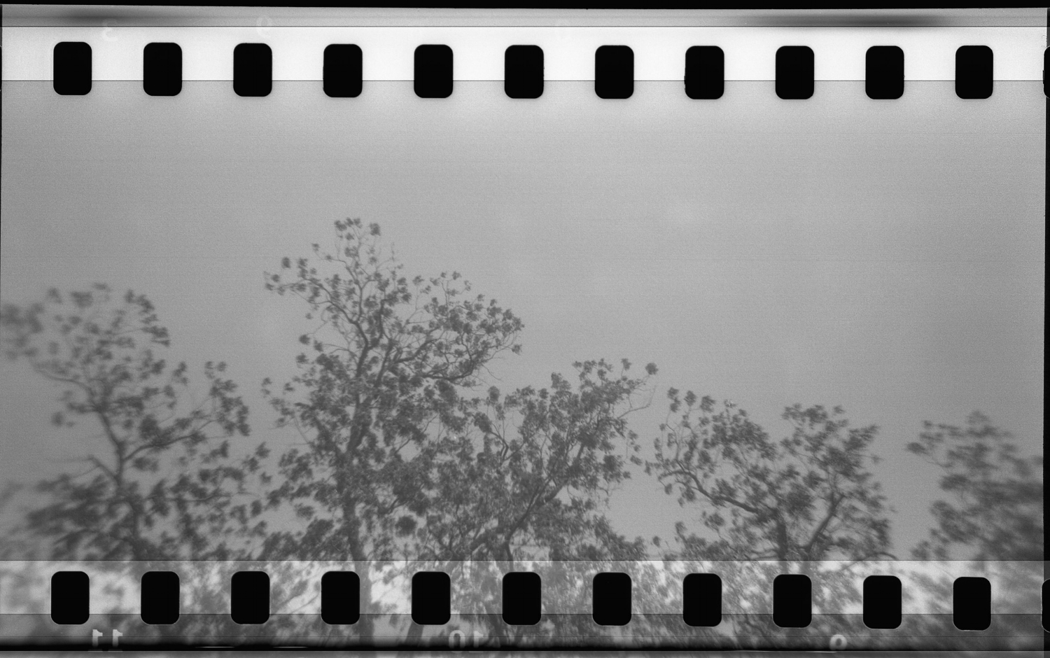 how to shoot 35mm in Holga