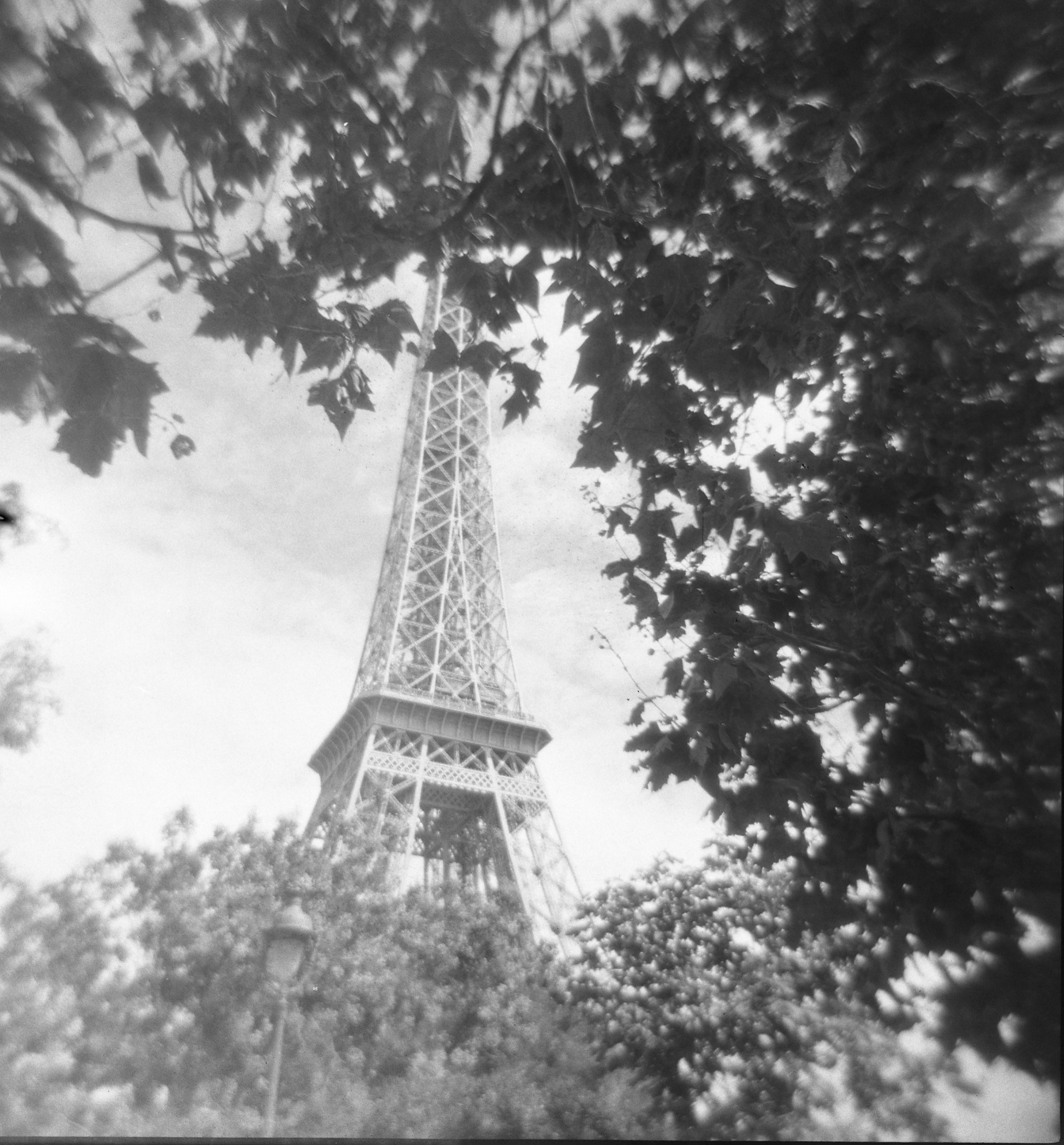 black and white film photo of the Eiffel Tower