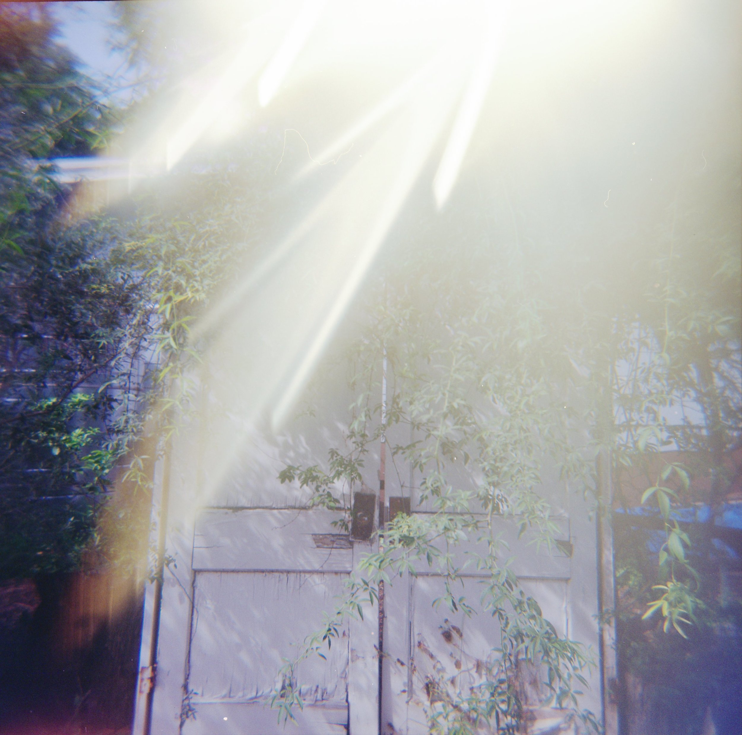 120mm film with light leaks