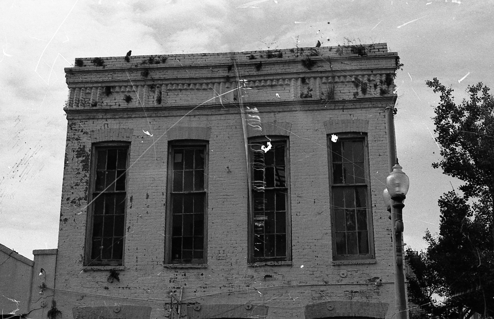 35mm photos of New Orleans