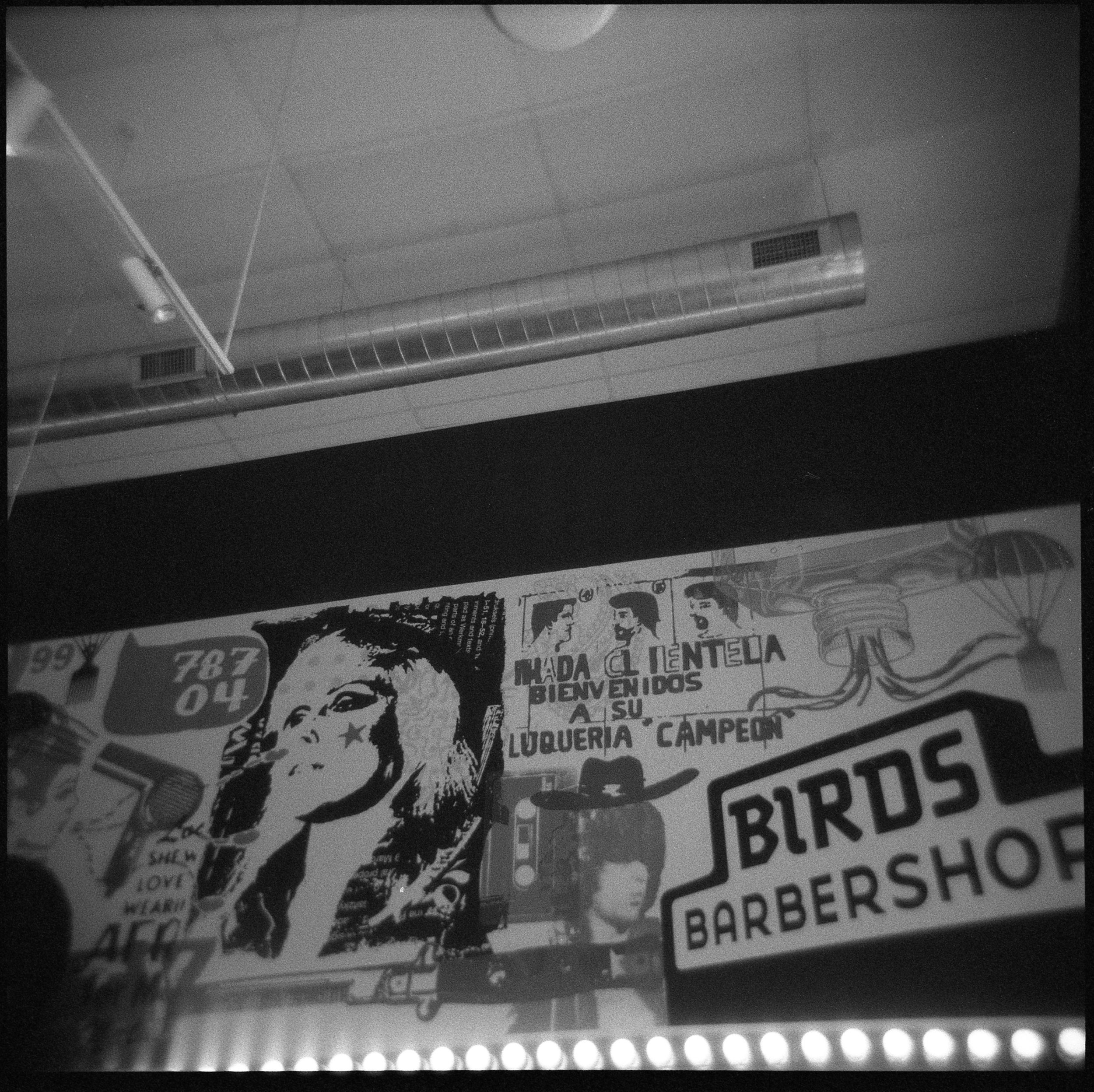 Holga and Ilford Delta 3200 indoors