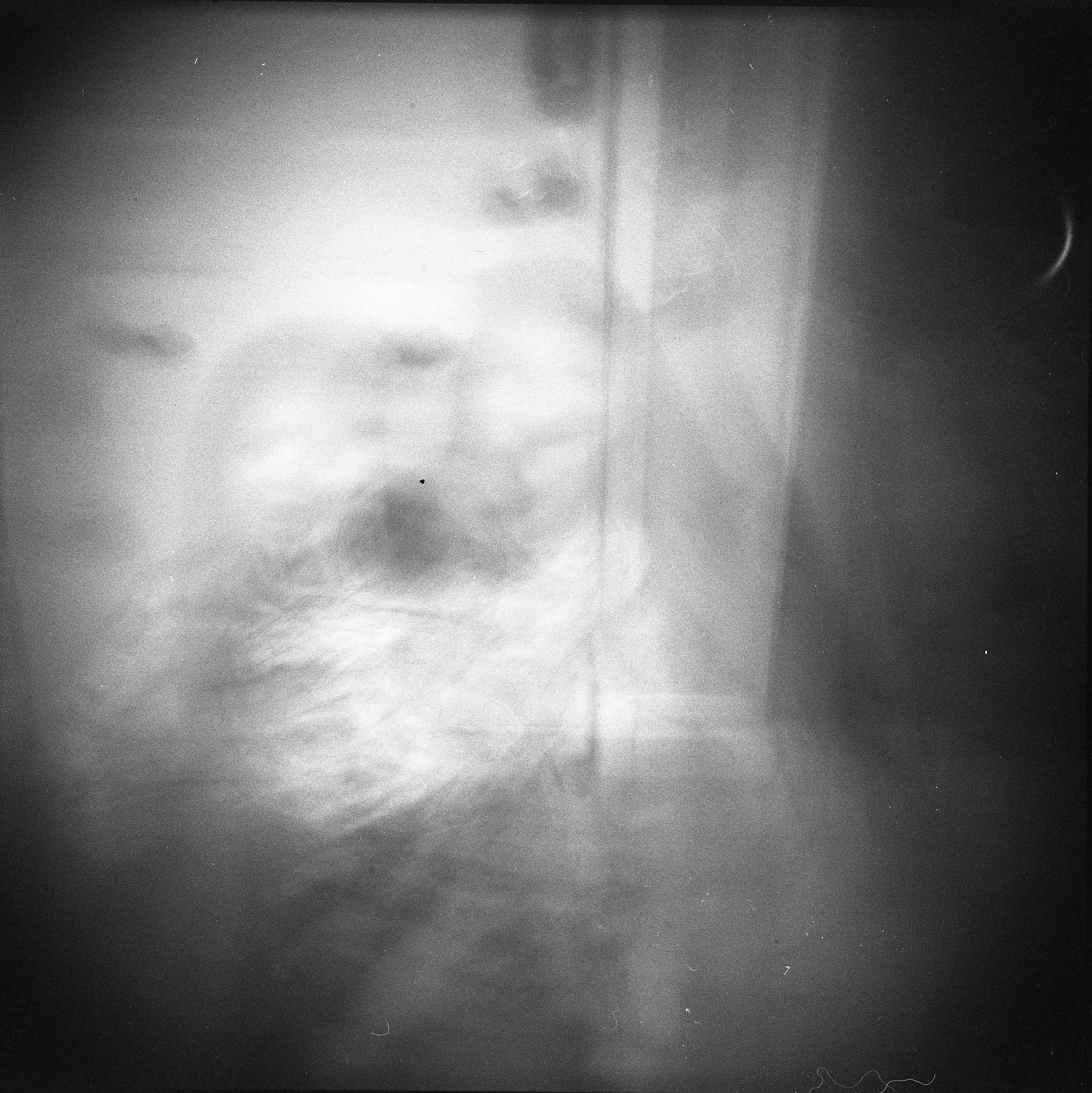 Holga | Arista Edu Ultra 100