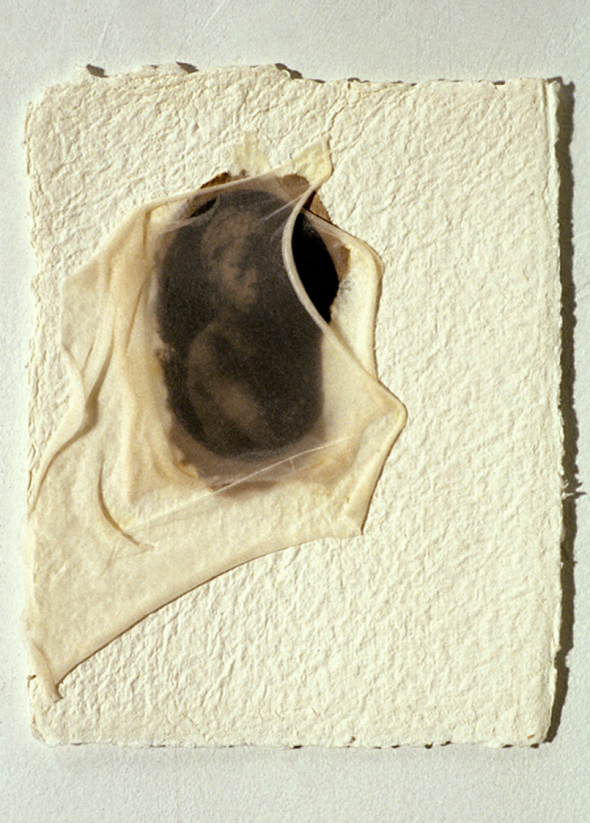 June Clark,  pur laine , 2004, mixed media,  Collection of Peter Caldwell + Stephen Mader, Toronto. © June Clark