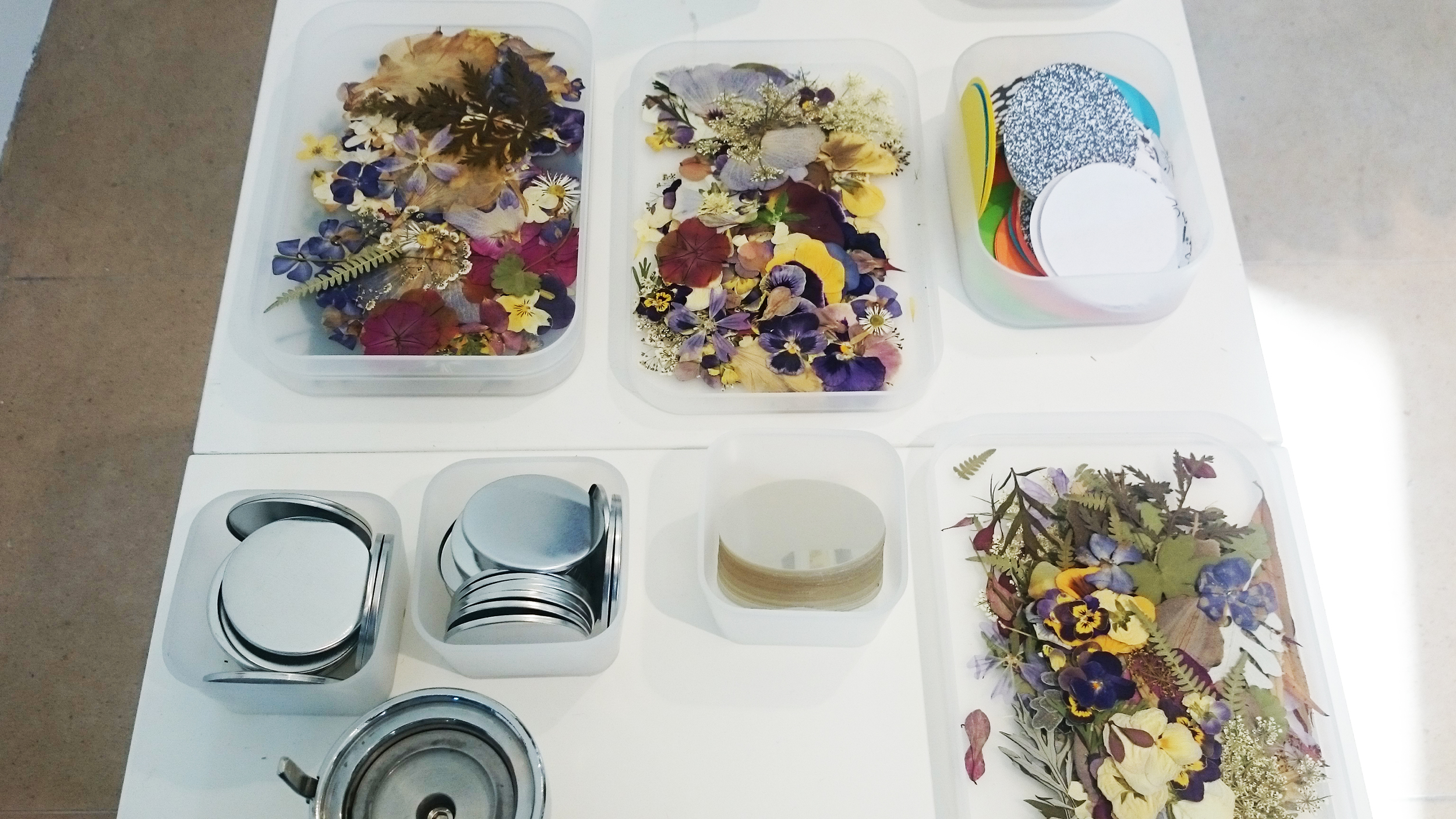 Pressed Flowers and Badge Making Materials