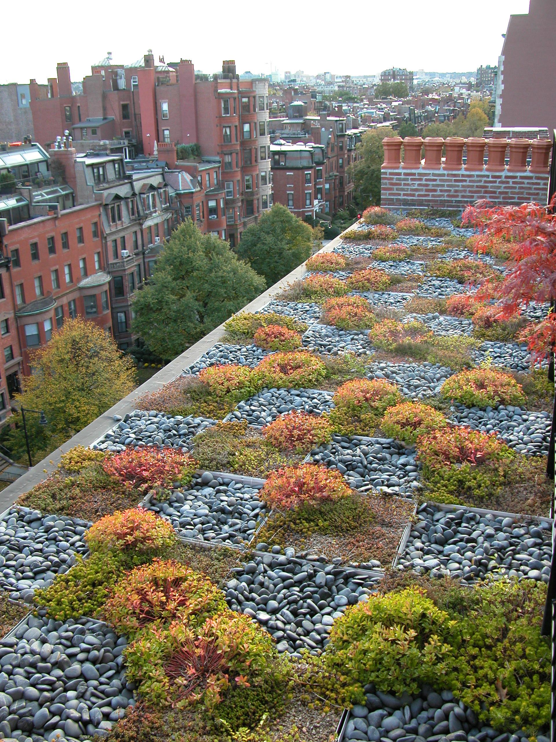 Back Bay Roof Garden   Boston, Mass.