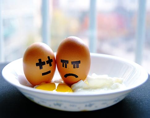 Eggscrop486.jpg