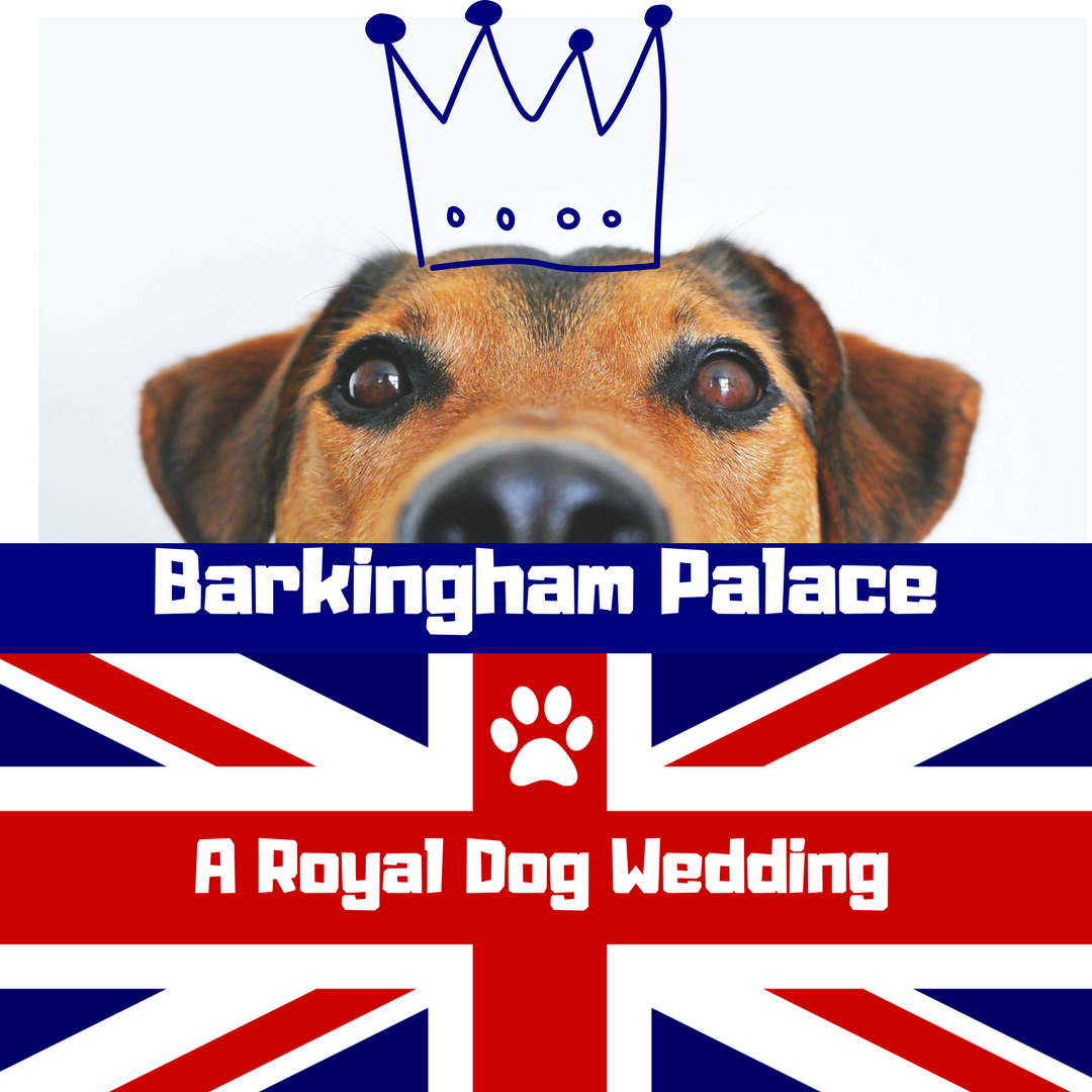 BARKINGHAM PALACEA ROYAL DOG WEDDI NG-2.png
