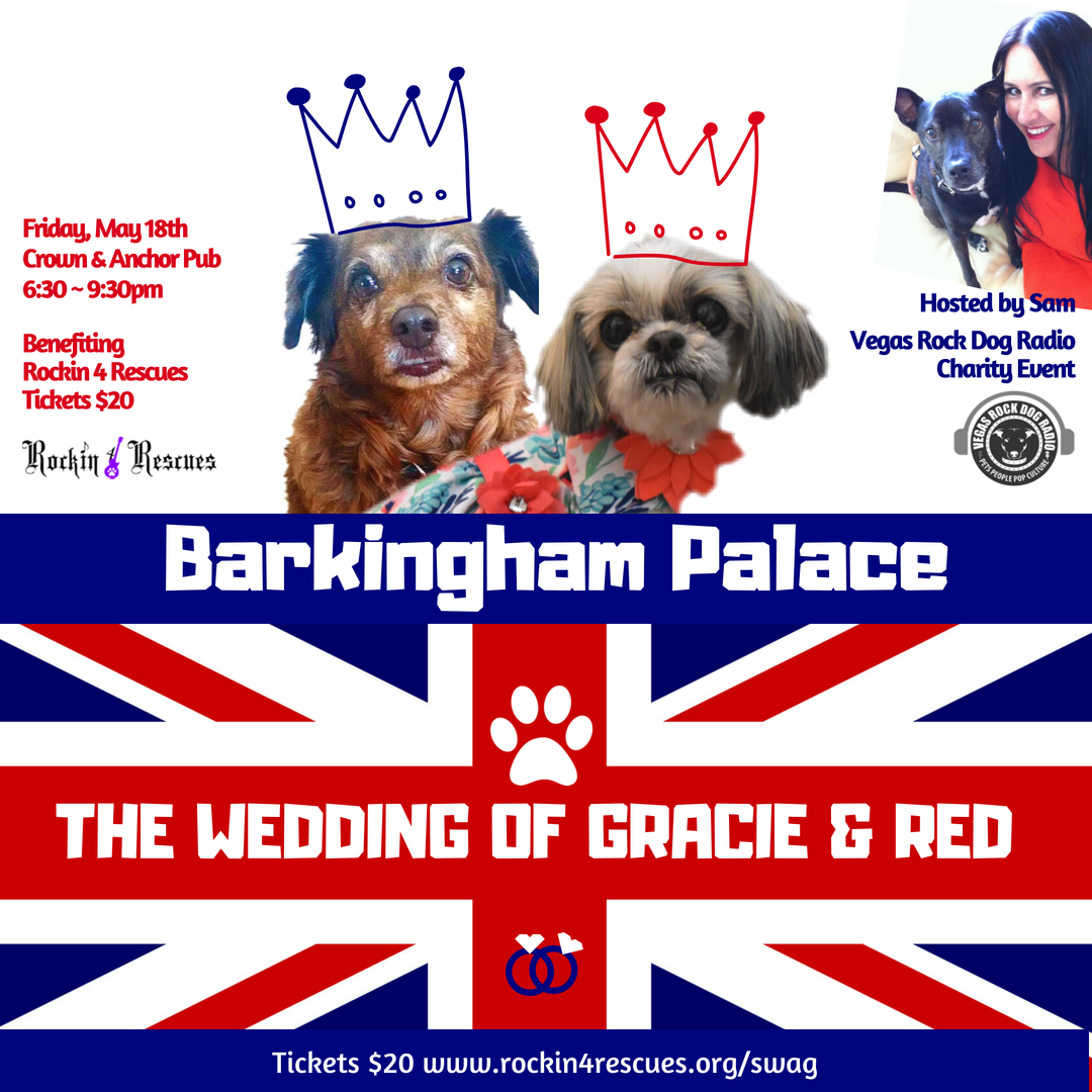 Copy of Copy of Copy of BARKINGHAM PALACEA ROYAL DOG WEDDI NG.png