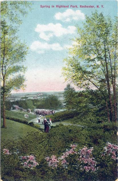Enhanced_Spring in Highland Park_Portait_rpc1753a.jpg
