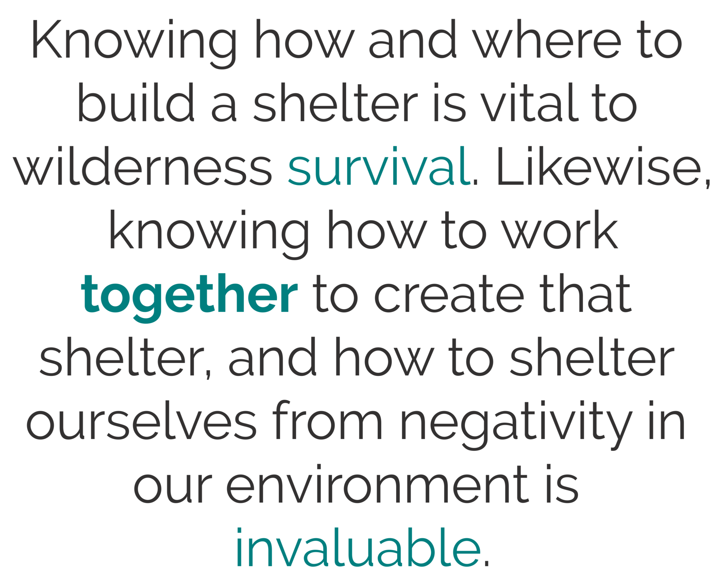 Shelter Blurb (1).png