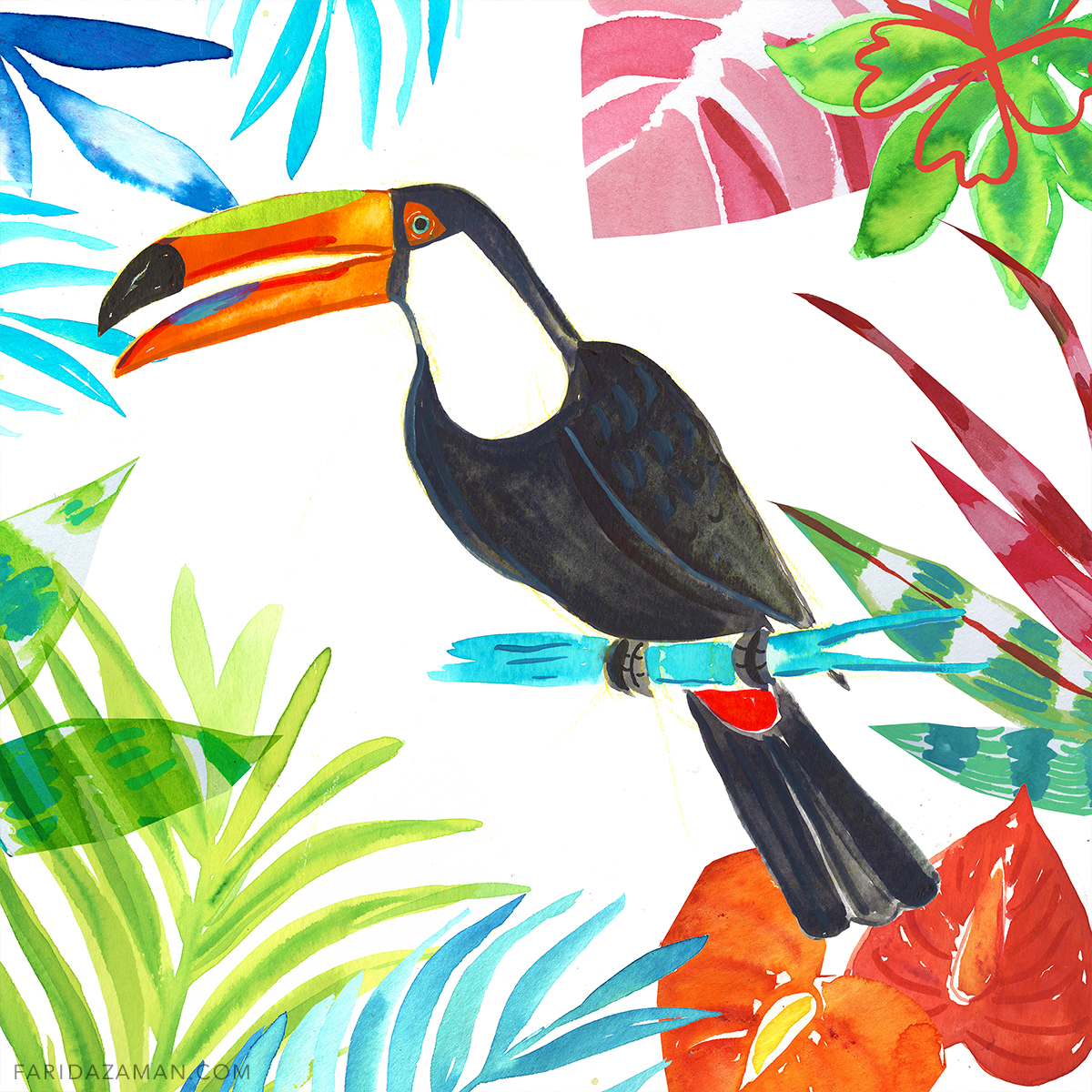 toucan 150.jpg