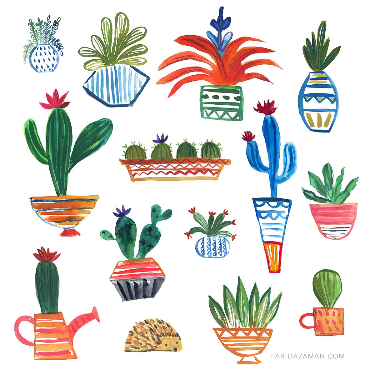 cactus150.jpg