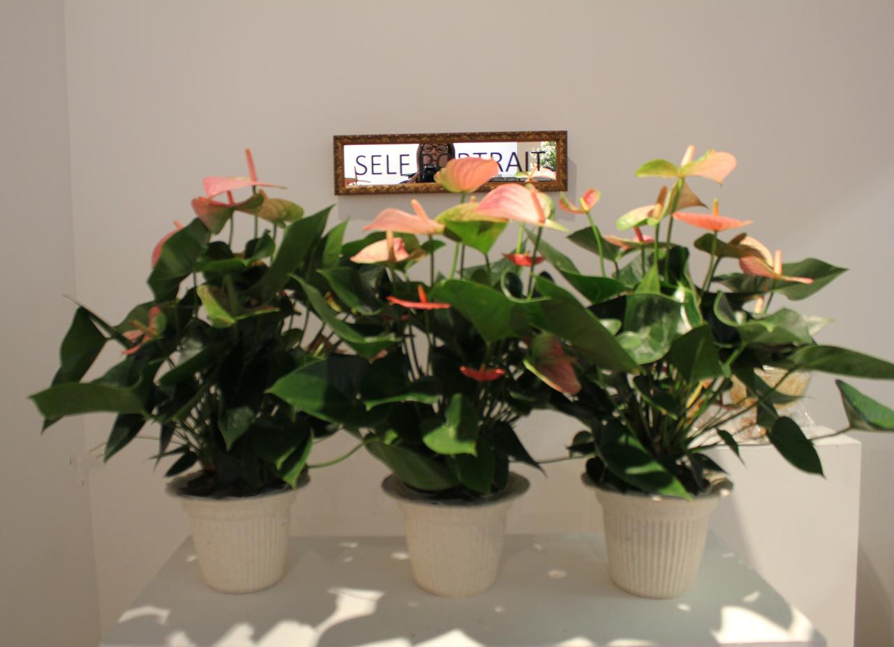 floral display w Sculpture _ laura phelps rogers.jpg