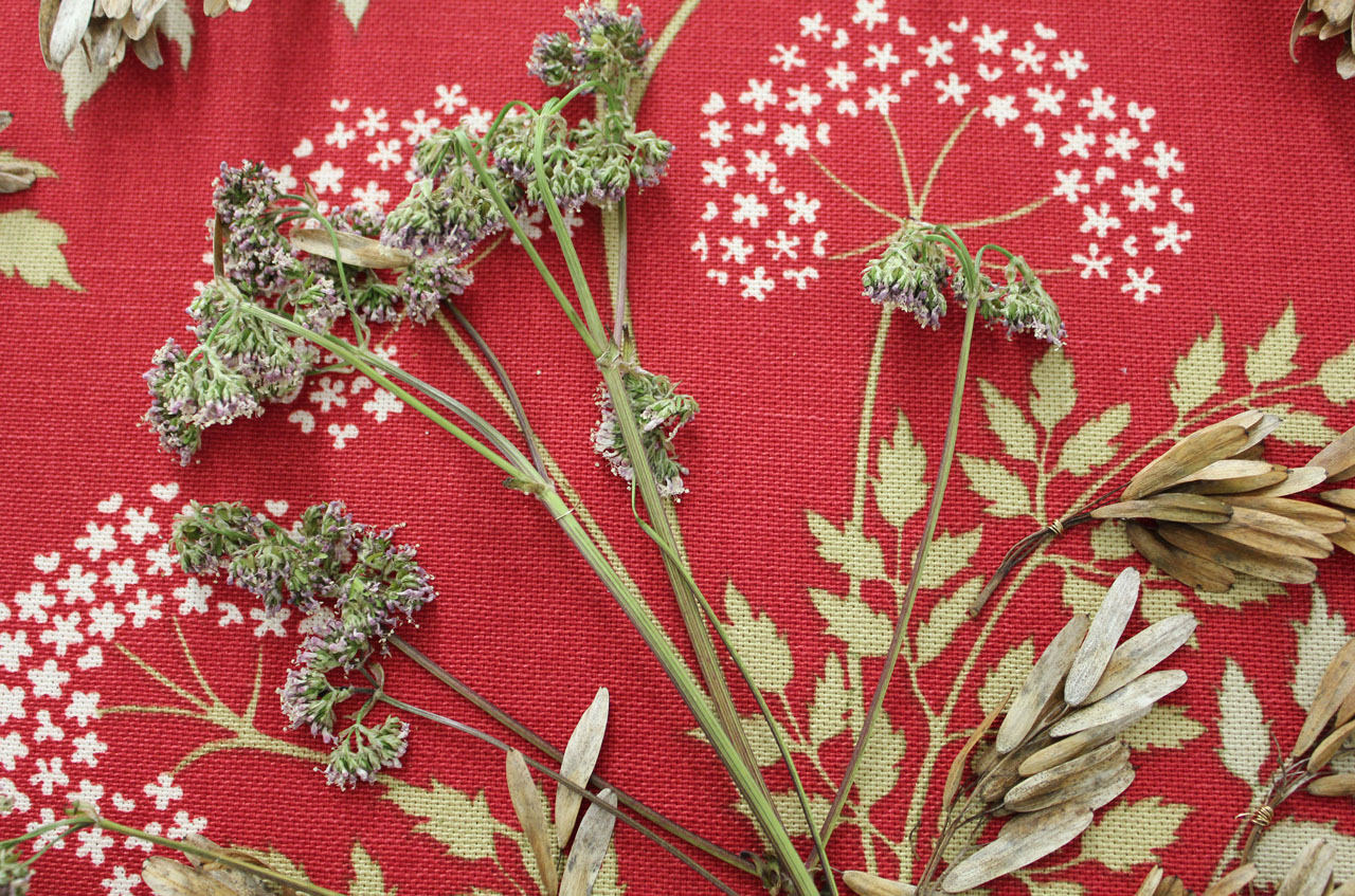 ephemeral floral design ideas _ laura phelps rogers.jpg