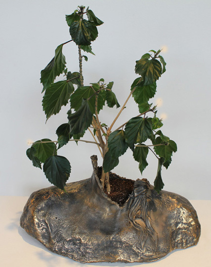 Personal Growth, Bronze, Dimensions Variable,Laura Phelps Rogers.jpg