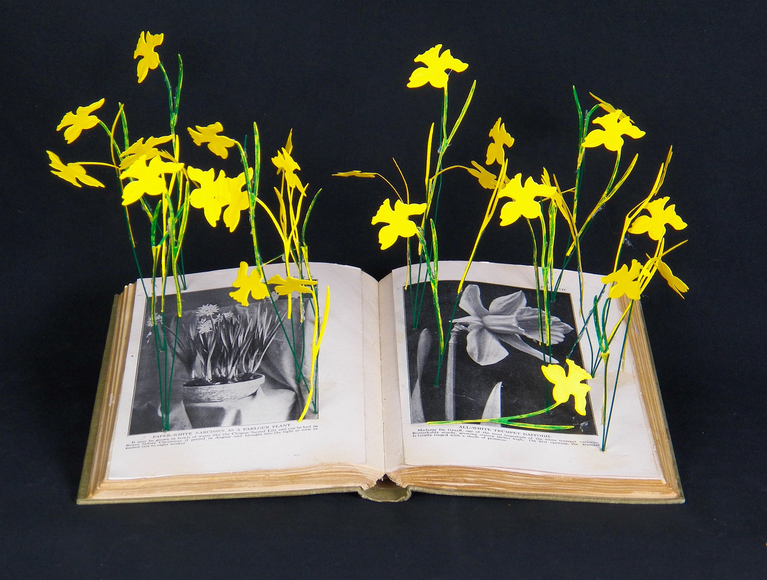 Yellow Flowers Book Mobile