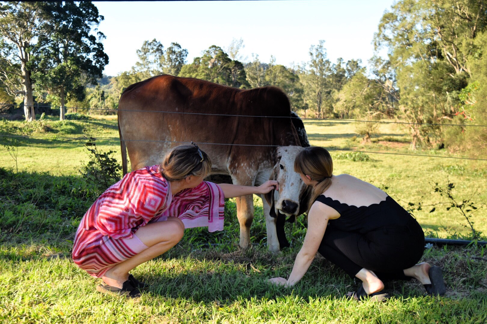 Julia and Lauren are sharing some love on the farm