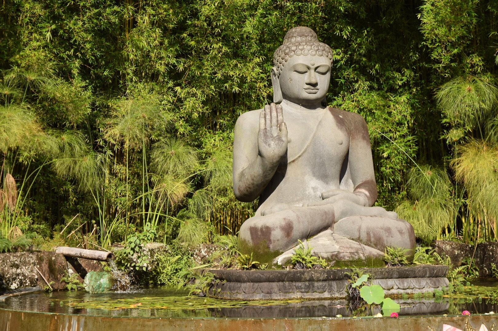 Buddha's Lotus Mosaic by Turiya Bruce at Crystal Castle, Mullumbimby
