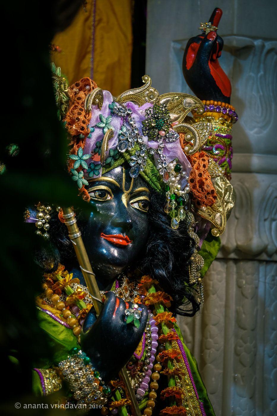 Krishna-Village---Krishna-compressor.jpg