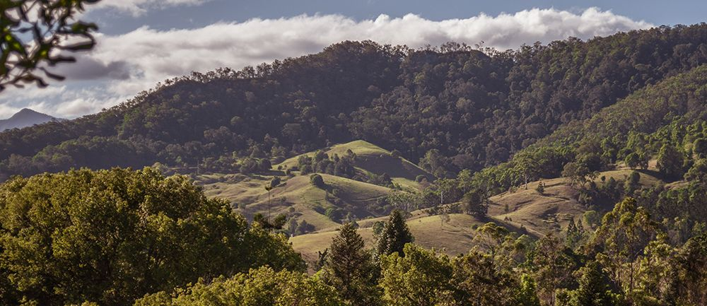 Krishna-Village---Hill-View.jpg