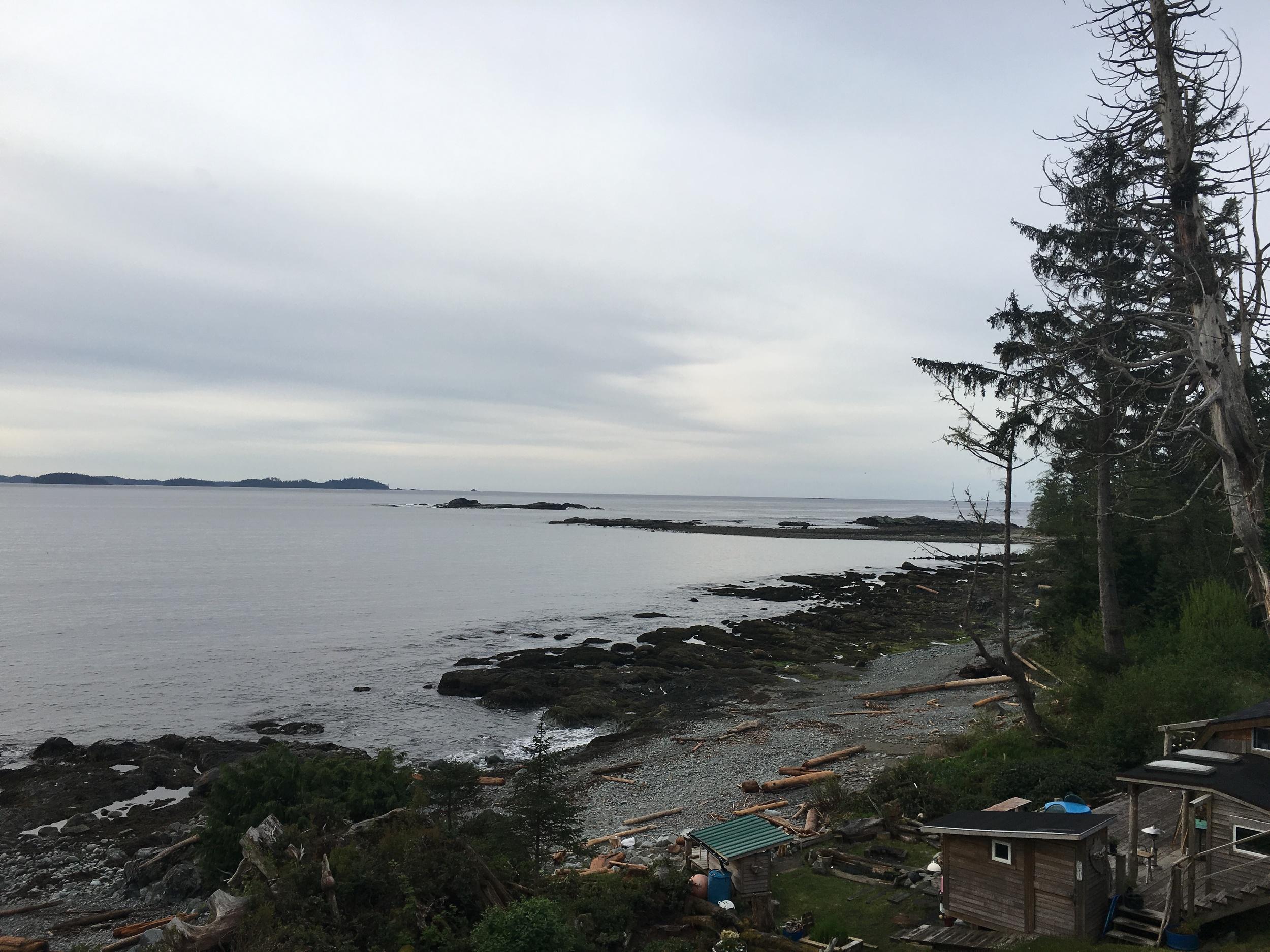 Heidi's backyard in Salmon Beach, Vancouver Island, BC  Photo:Zach
