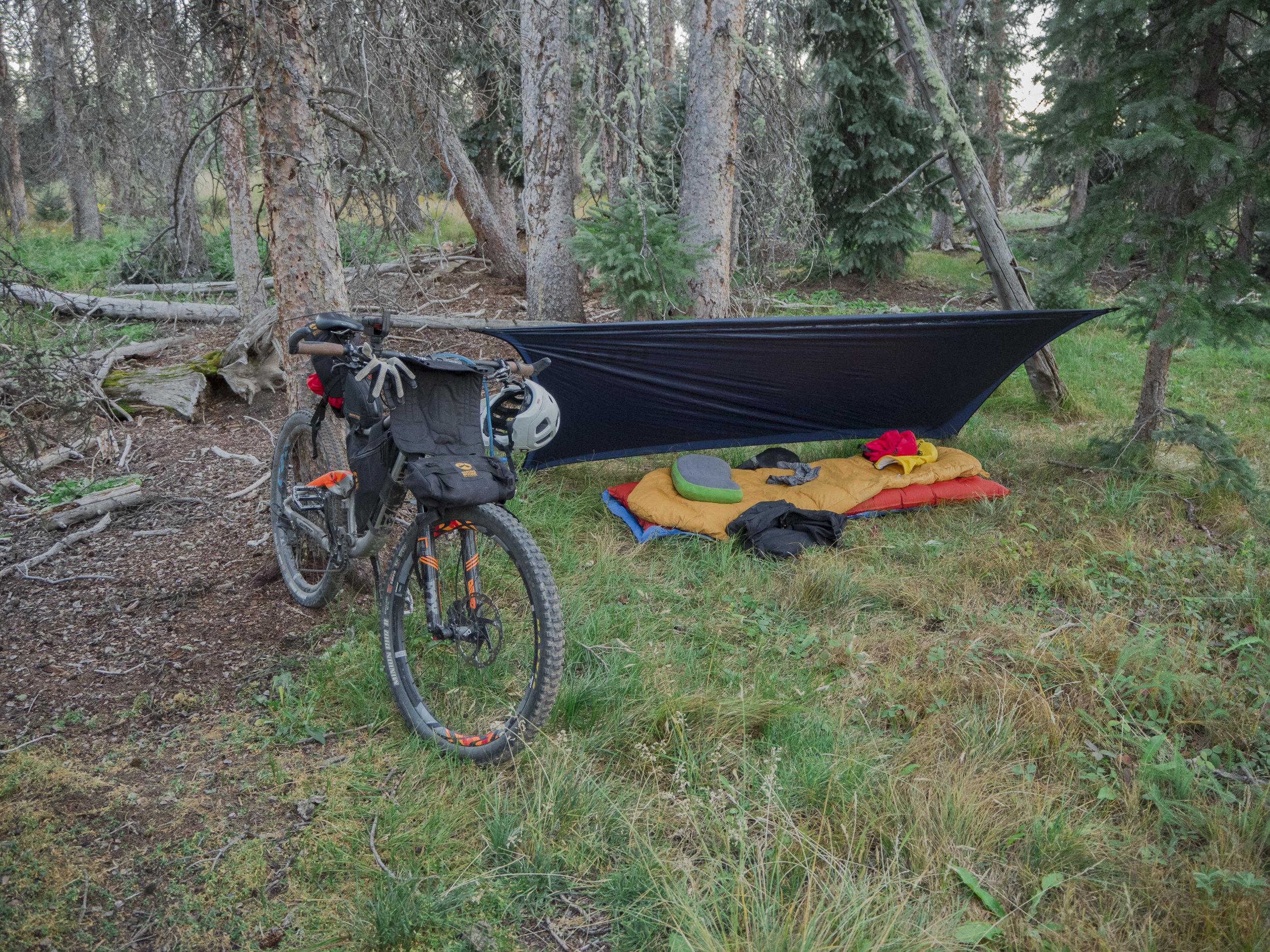 Spring Creek Camp.JPG