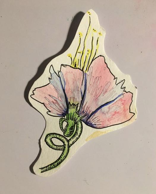 Flora Study I