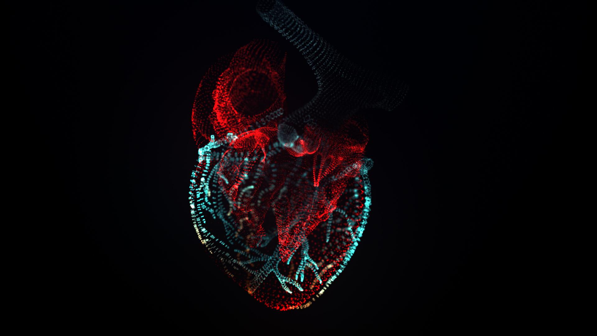 OBJ_Heart_HD_k08 (0-00-05-22).jpg