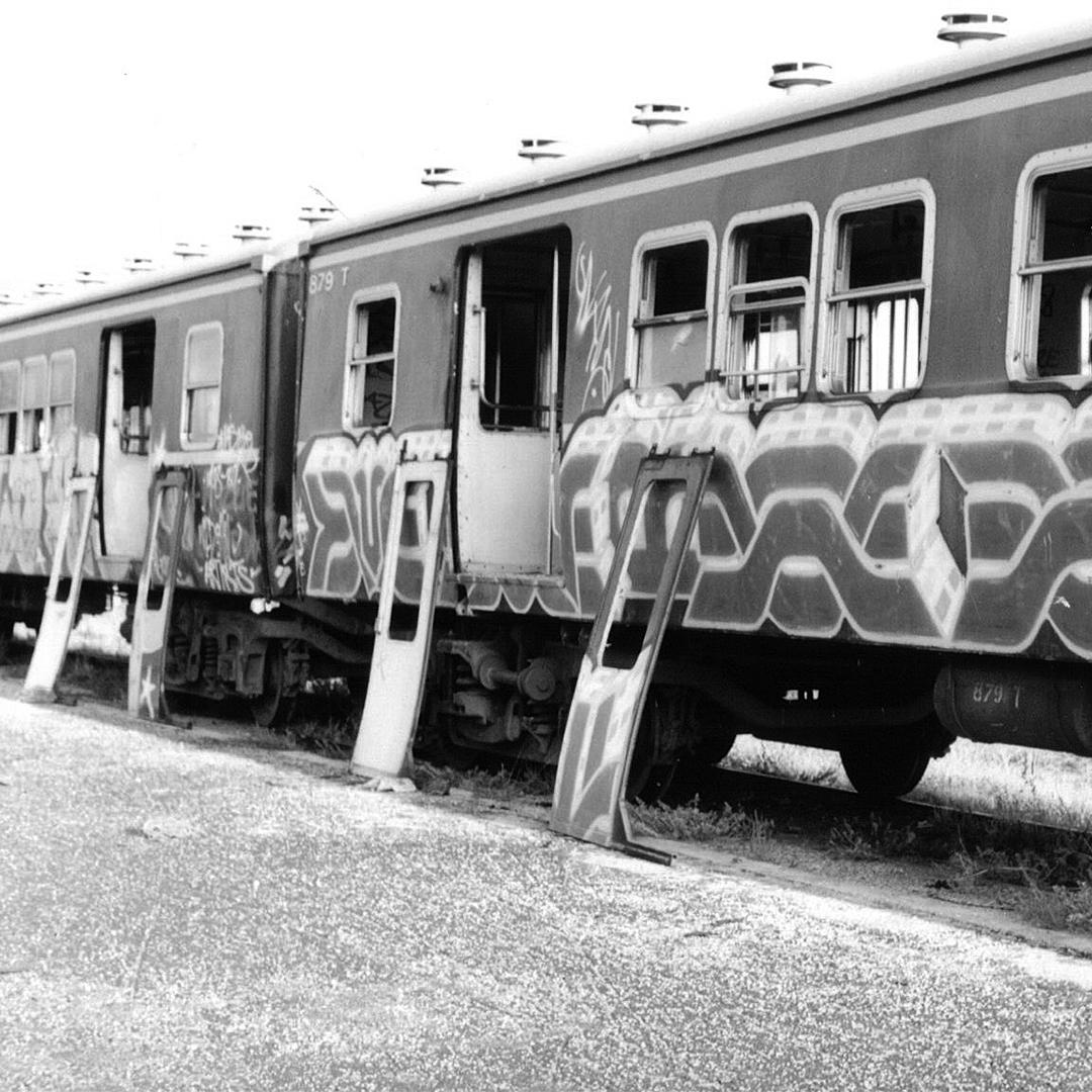 TCCM_Merda_Train.jpg