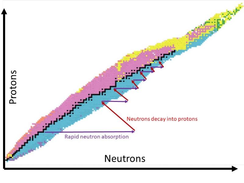 Supernova R Process.jpg