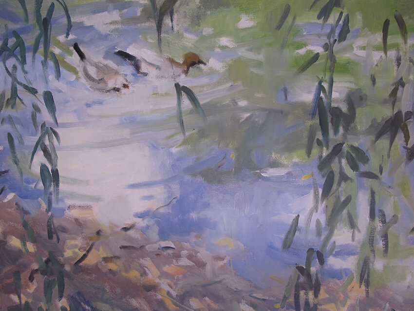 ANGELA ABBOTT - Willow_Strands_and_Ducks_Montsalvat_3882.JPG