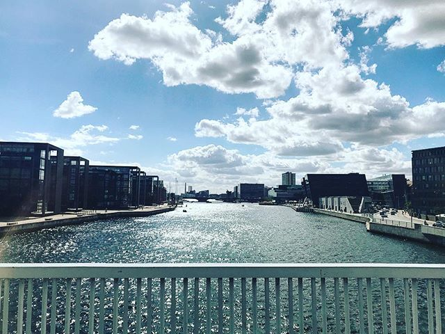 this weekend the harbour is very picturesque 🚲🤩 #cyclingcopenhagen #rideinstyle #harbourcircle #visitdenmark #copenhagen #bridges #copenhagenvisitorservice #architecture #summer #picoftheday #københavn #knippelsbro #christianshavn #visitcopenhagen