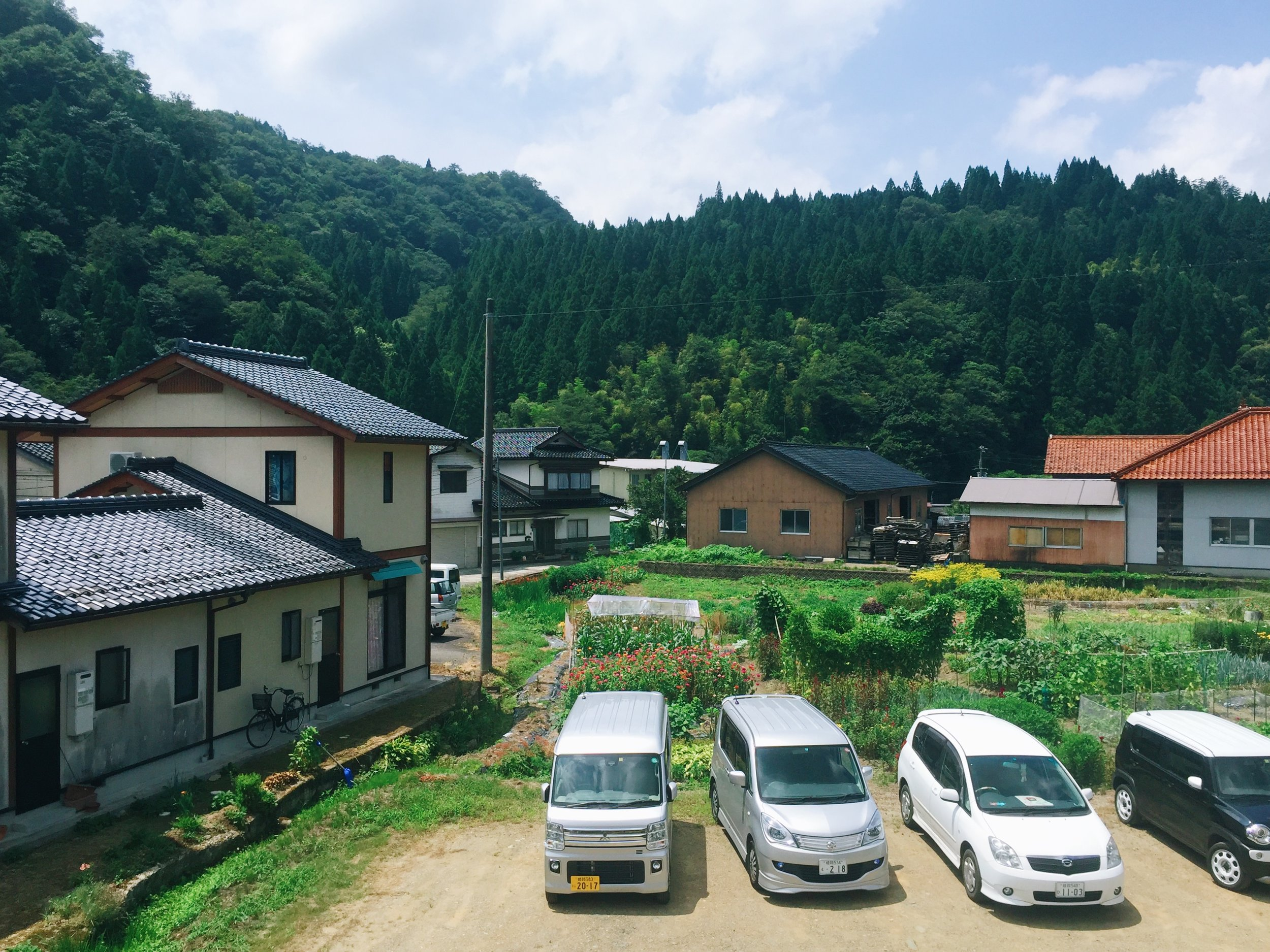 The Japanese countryside during summer