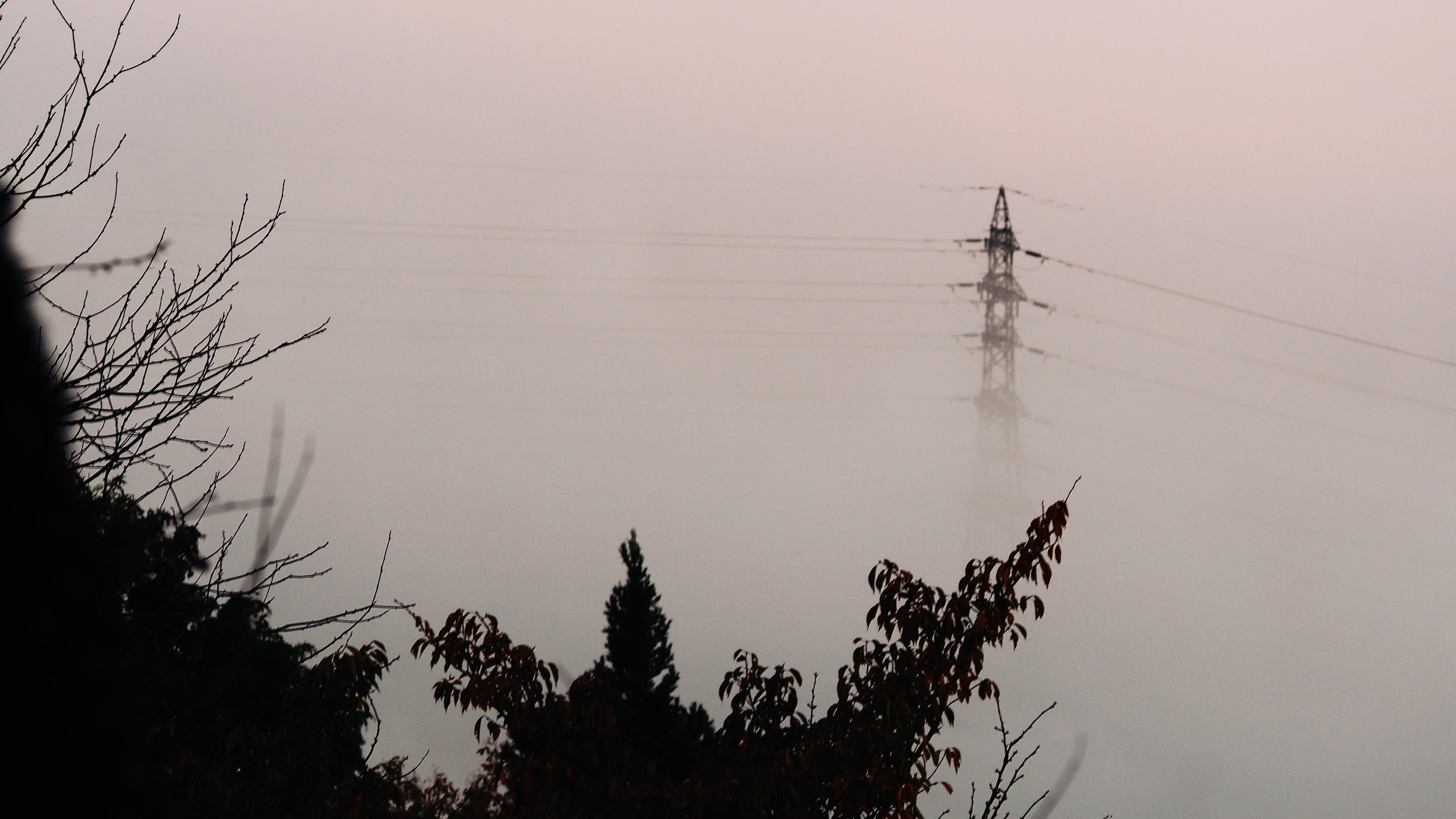 An electric pole peeking out through the morning mist