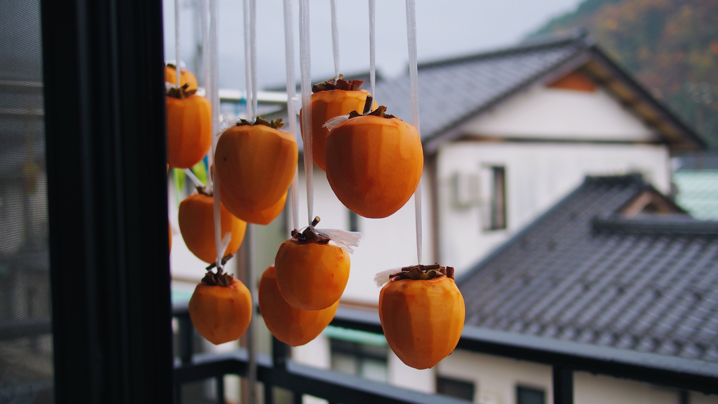 Hachiya persimmons (渋柿) being left out to dry