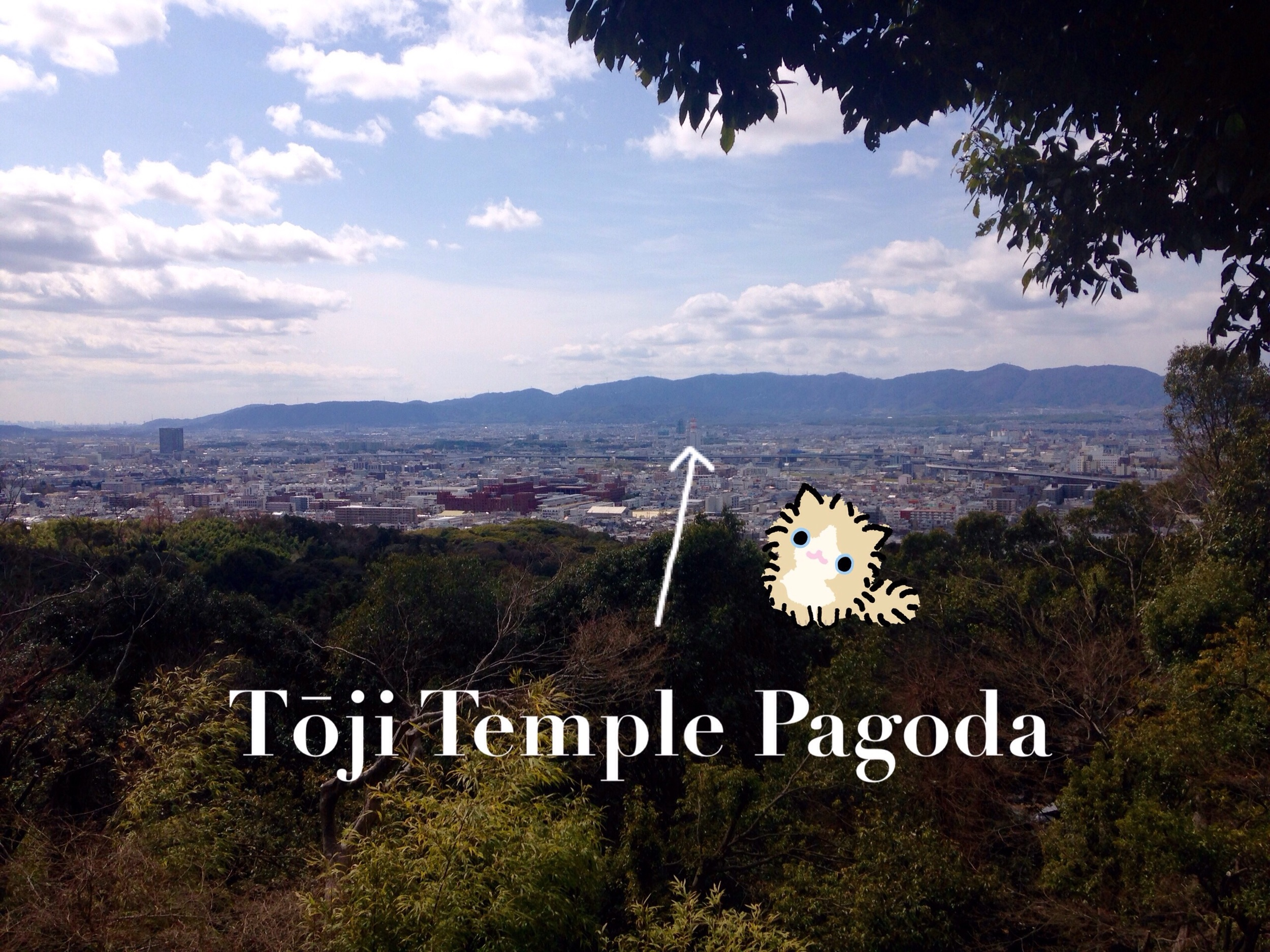 The view from halfway up is good enough for me and kitty. Also, I didn't make it to Tōji temple, but I could see it. Tōji temple houses the tallest wooden pagoda in Japan. Good enough.