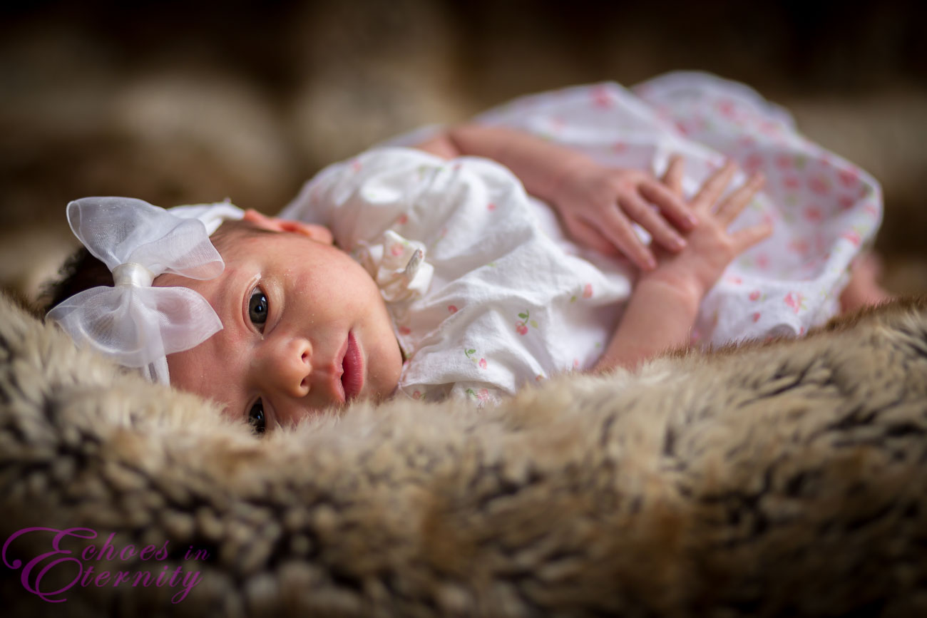 Tucson Arizona Newborn Baby and Family Photographer