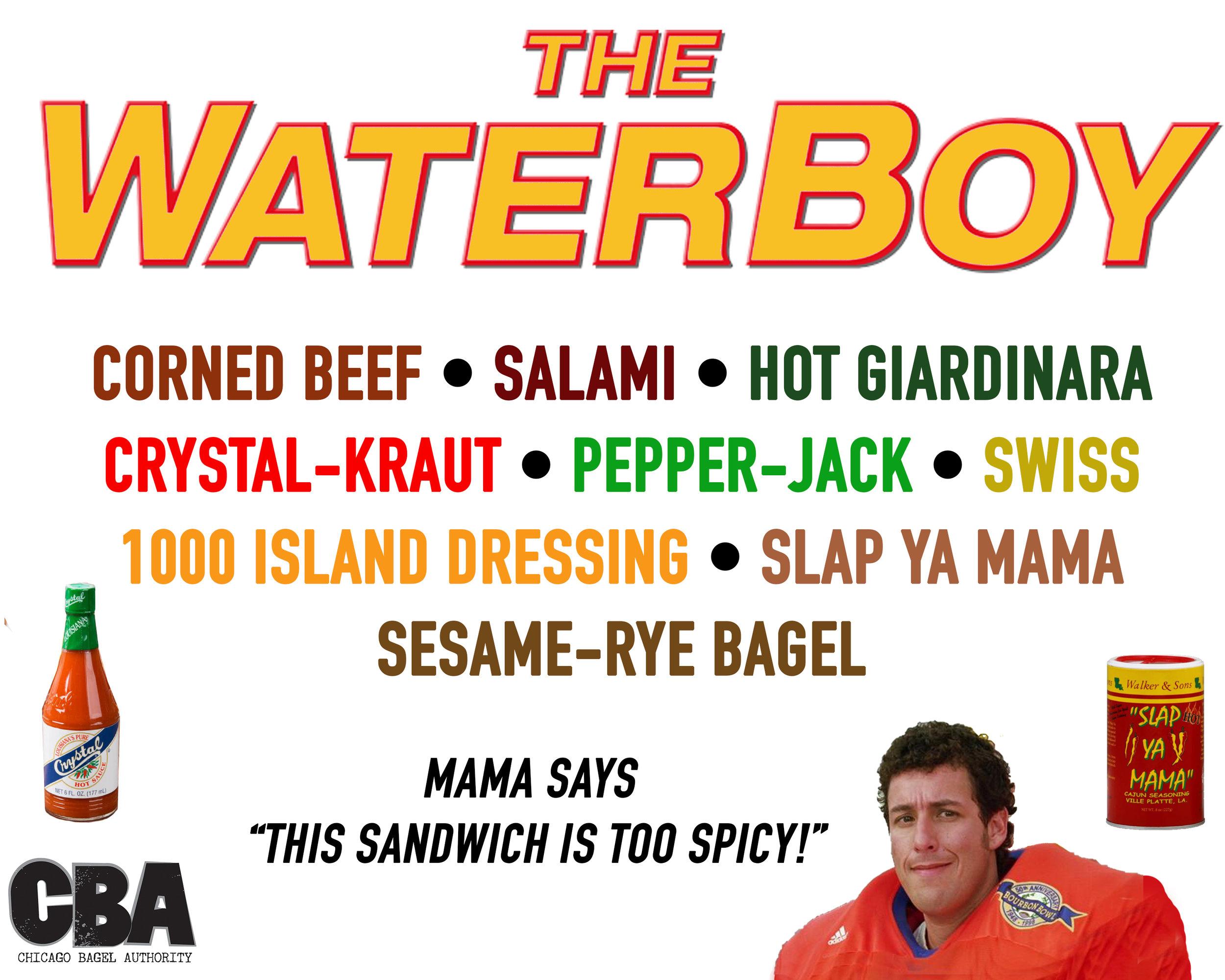 The Waterboy.jpg