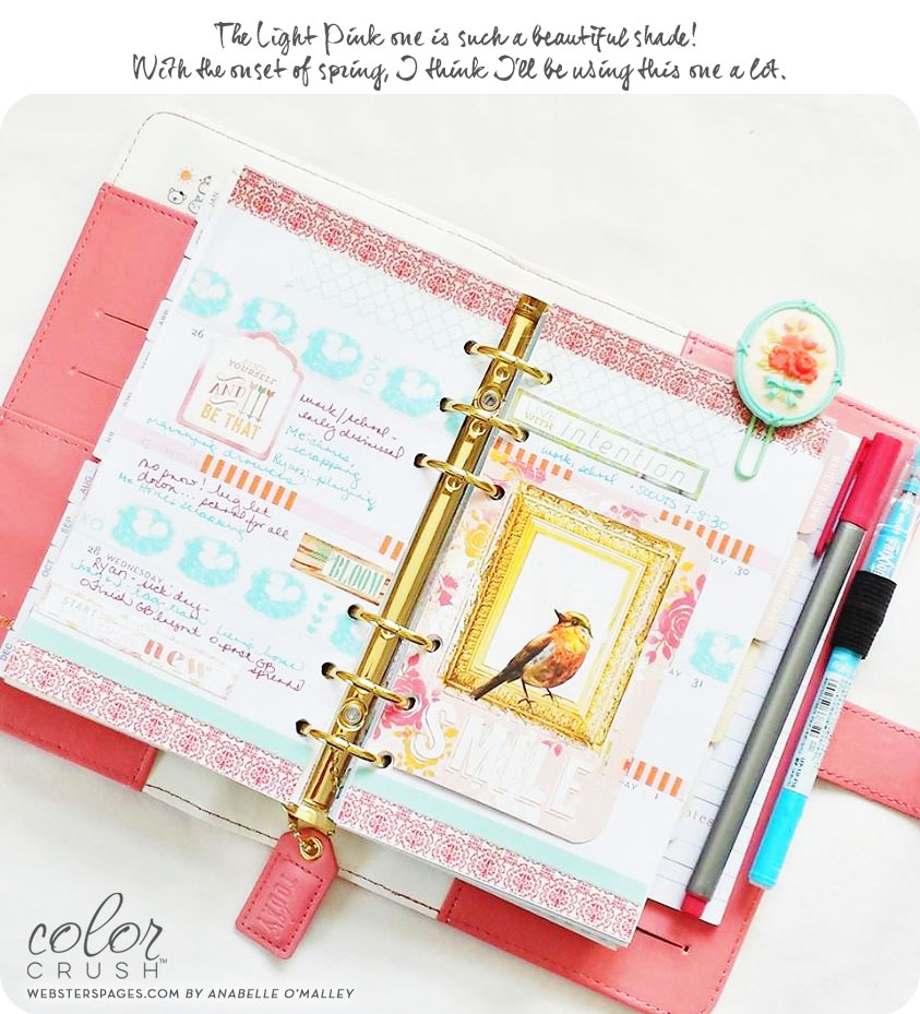 Websters_Pages_Light_Pink_Planners_Anabelle_OMalley.jpg
