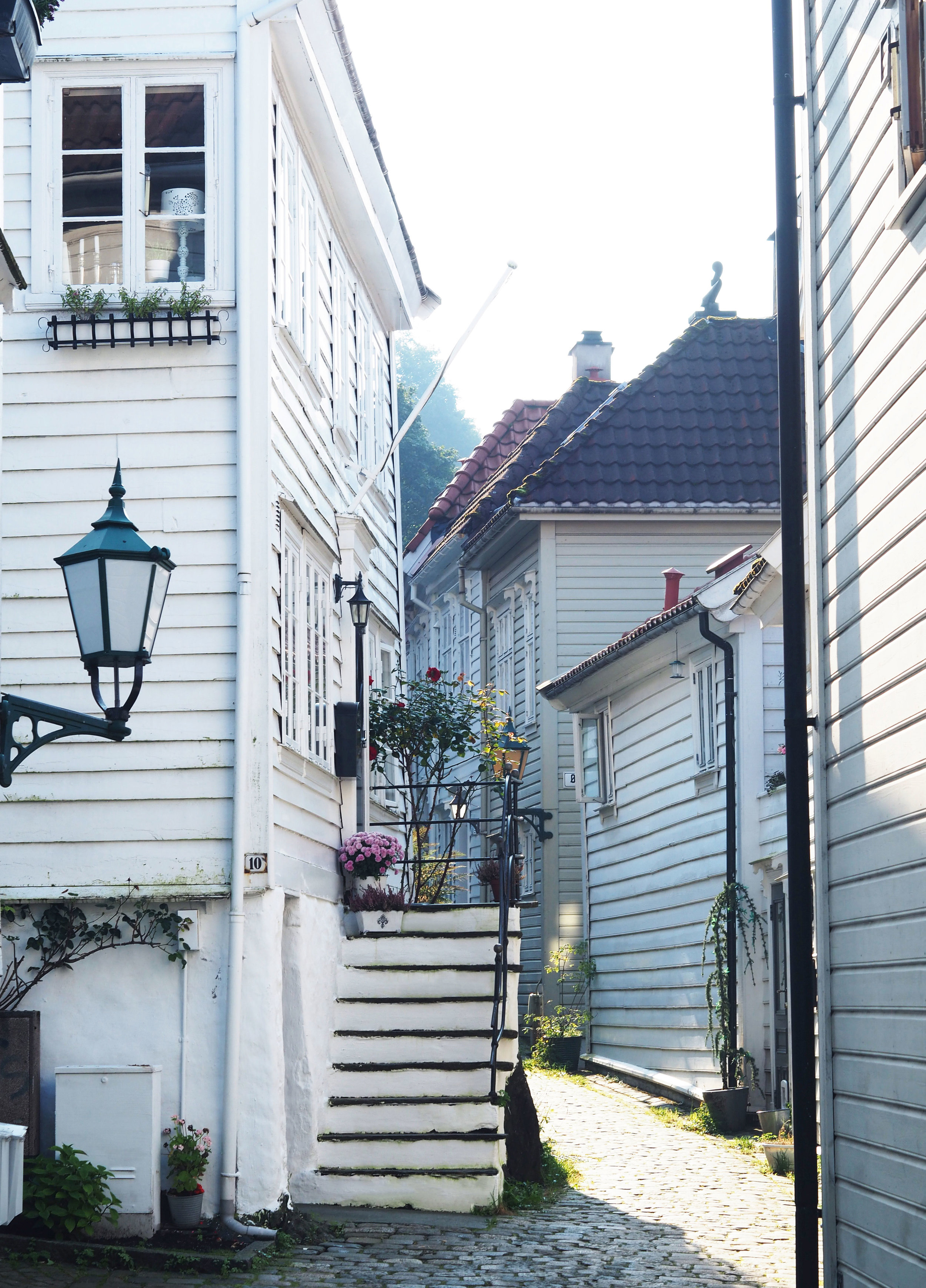 Bergen5-1.jpg