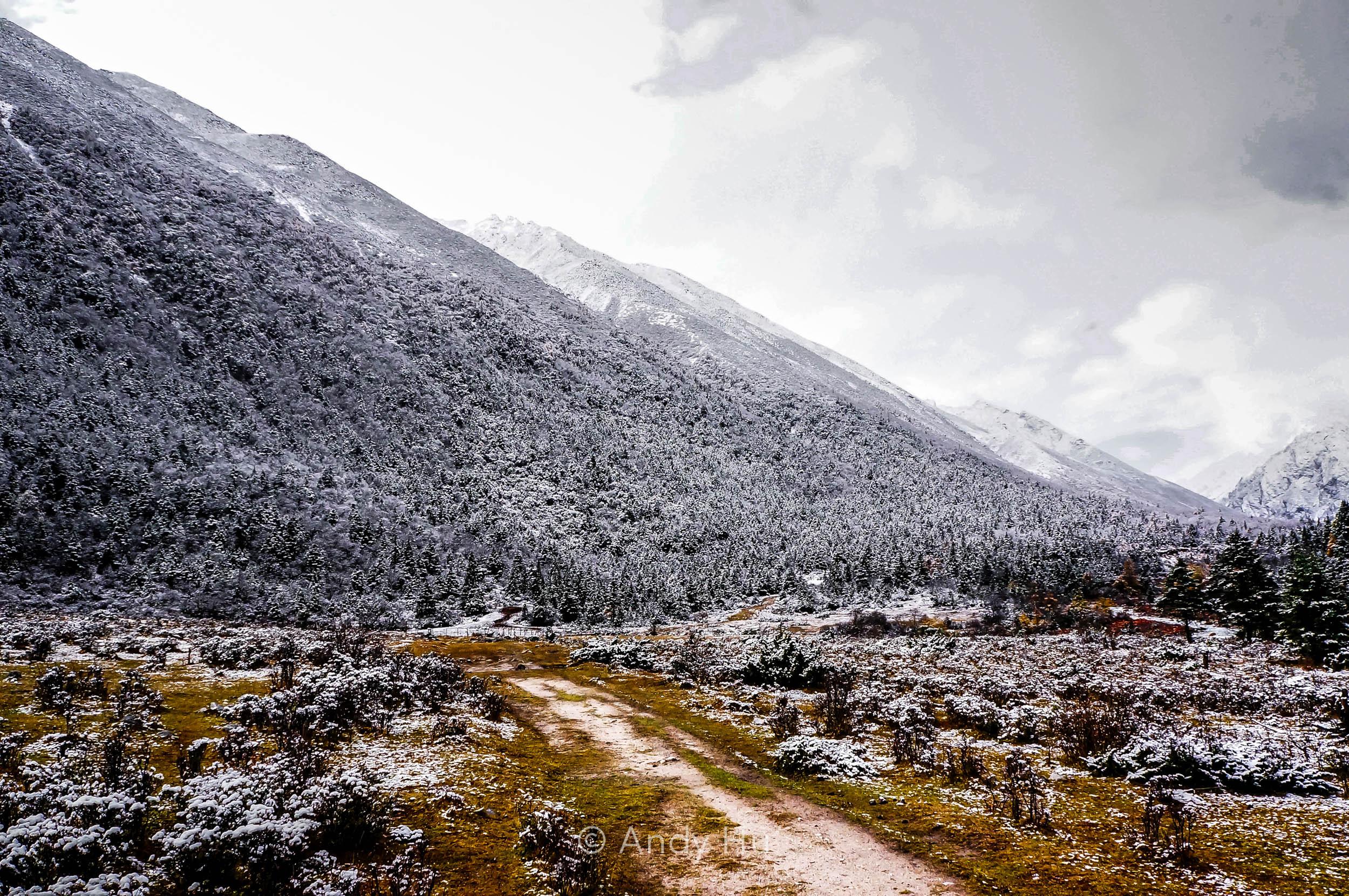 Grazing lands, day 1, Mt. Gongga Trek