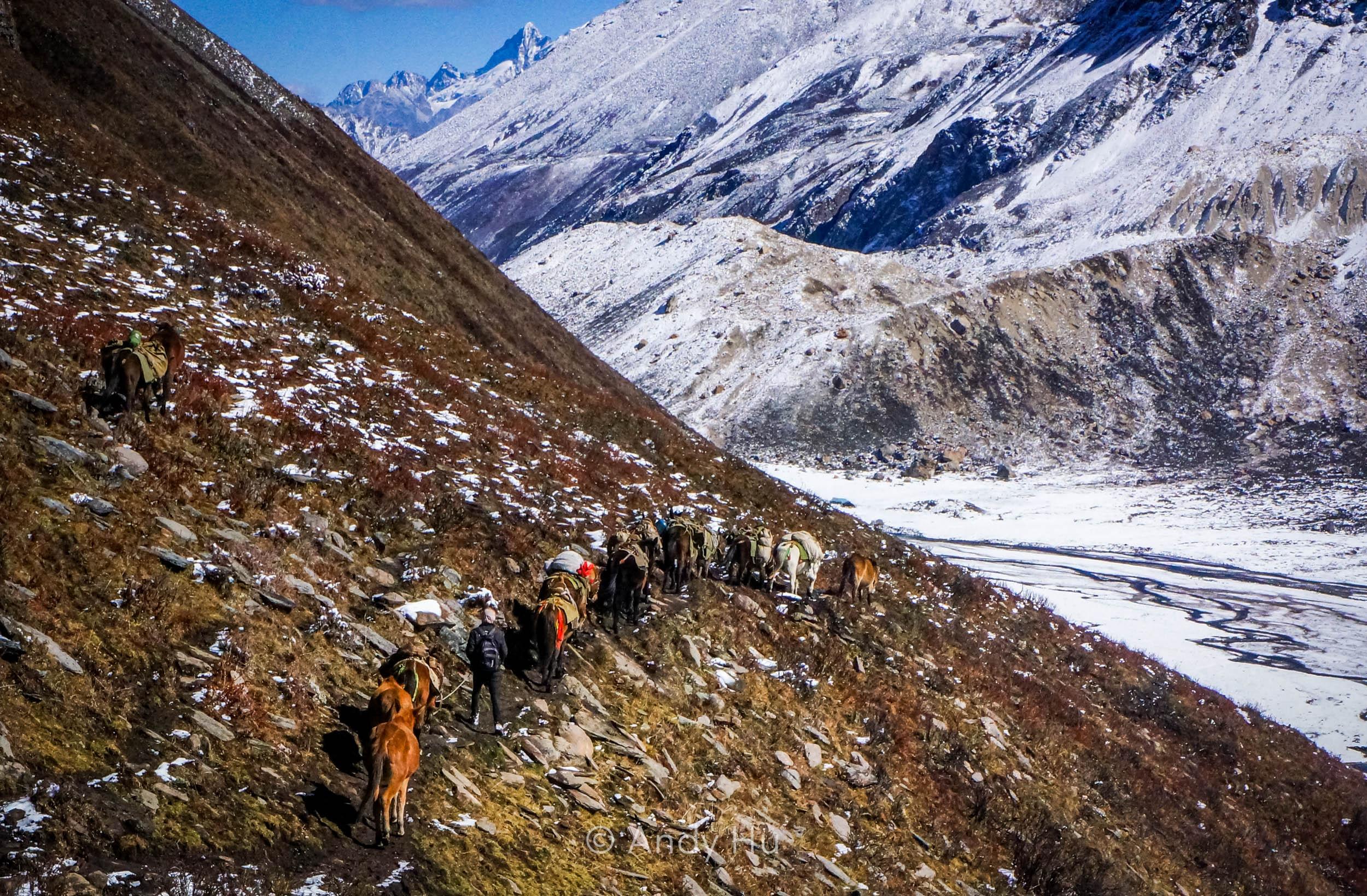 Horse caravan, Mt. Gongga Trek
